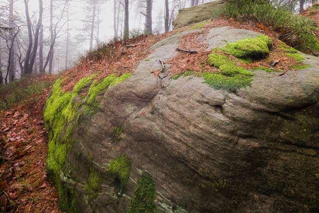 Sandsteine auf der Kalmit